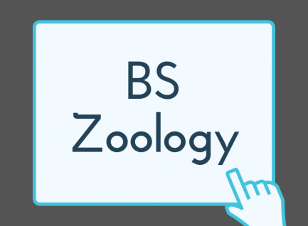 BS (Zoology)
